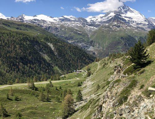 Zermatt Marathon – udfordrende 2.400 hm i tynd luft