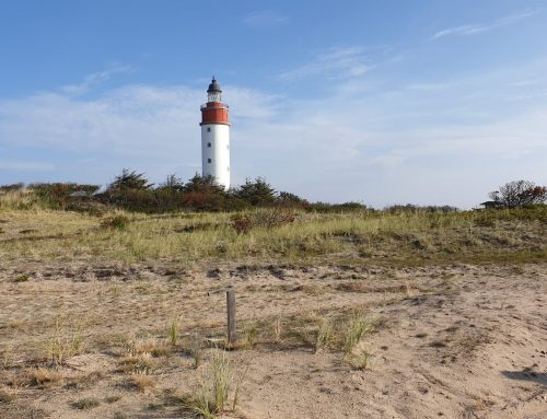 Anholt Marathon – i Nordeuropas eneste ørken