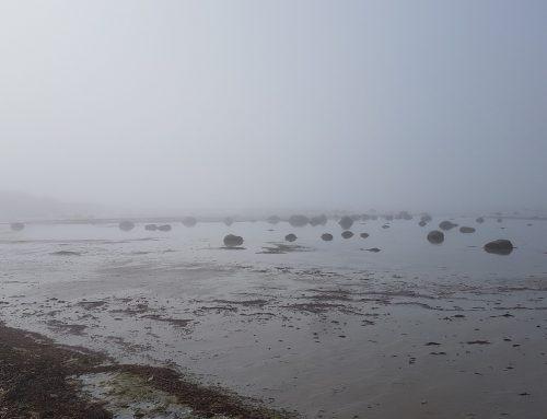 Læsø Marathon i lyddæmpet natur indspundet af havgus